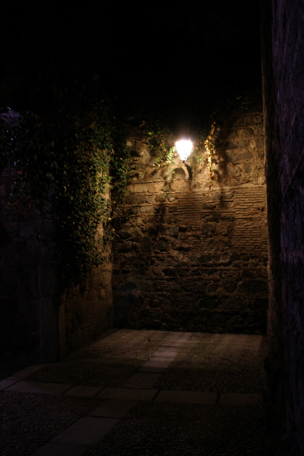Inside one of the gates at night
